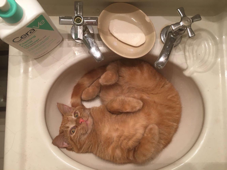 Sink derp