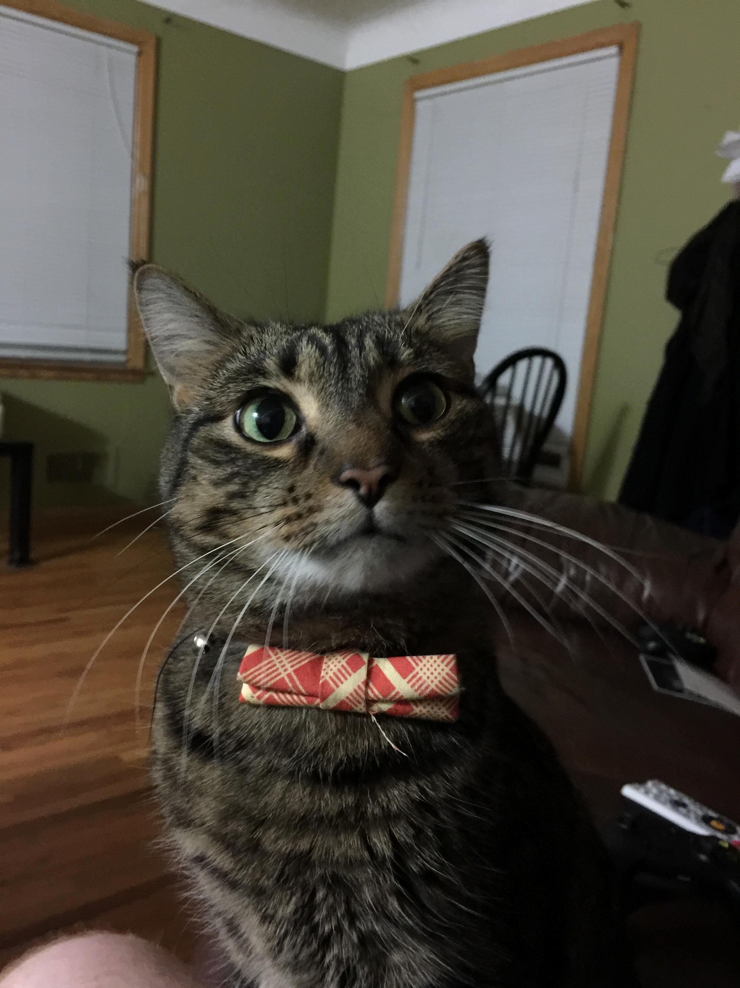Butters. dapper as always.