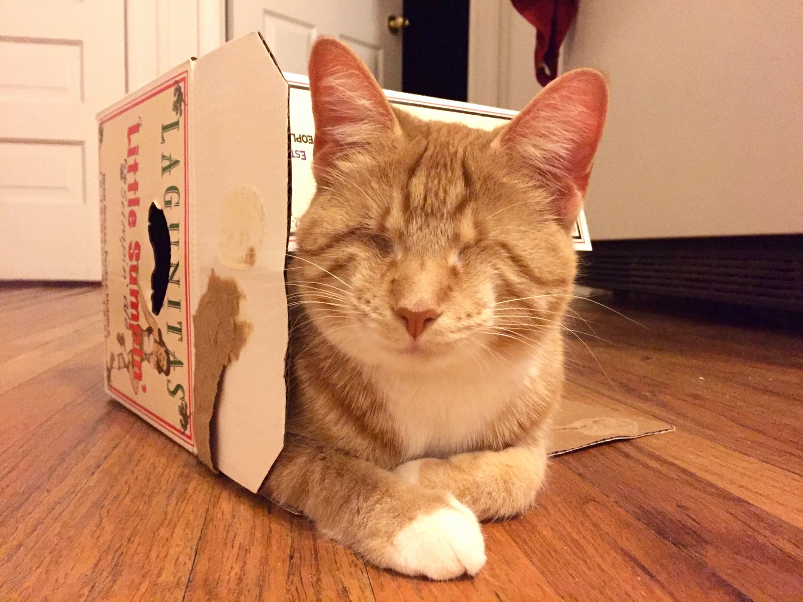 Daddy gets his beer i get his box