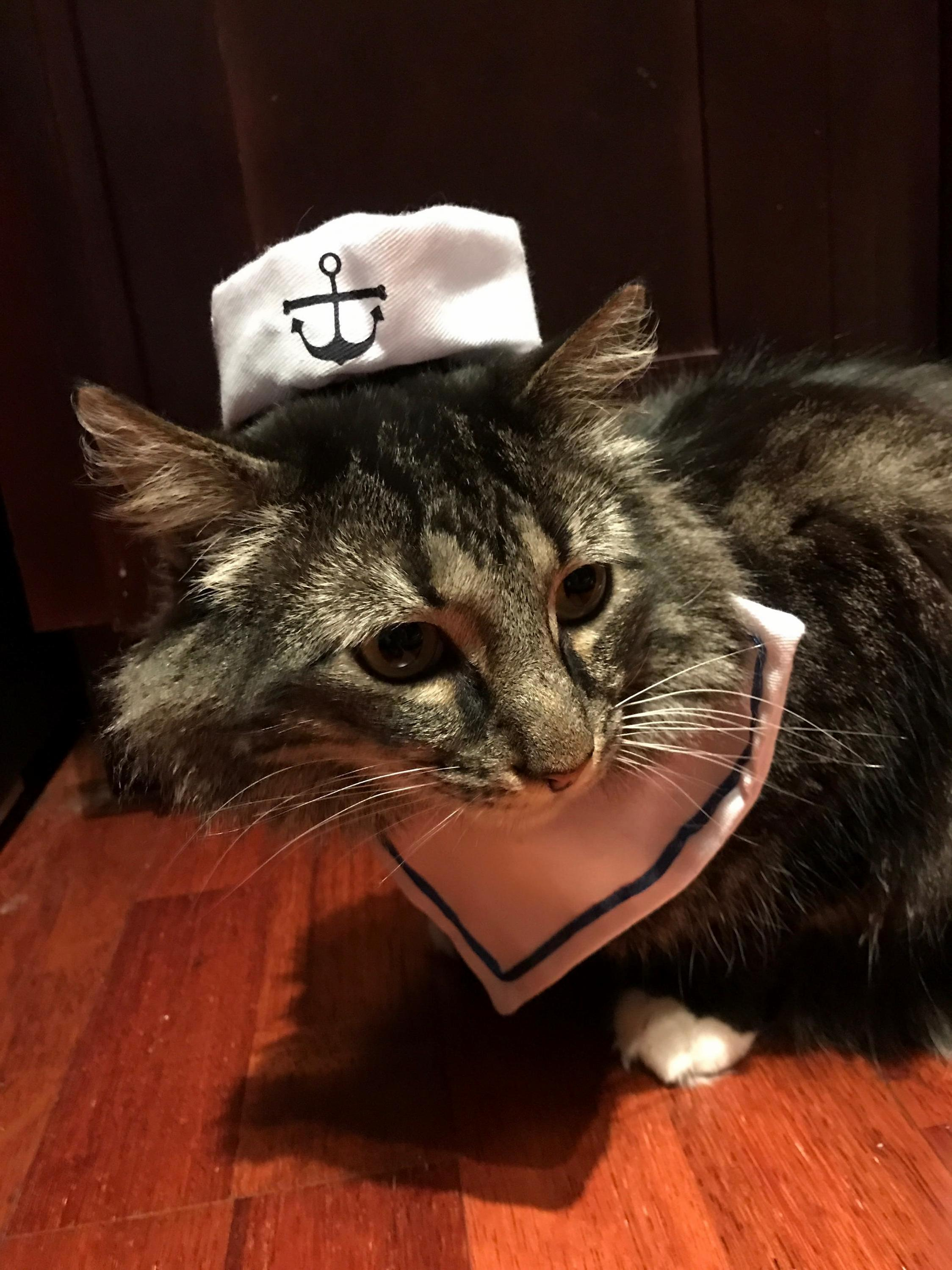 Oh a sailors life is the life for me… this sailor is so mad at me right now.