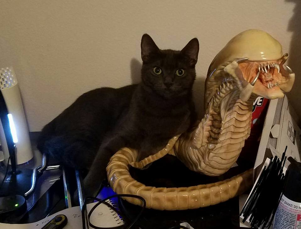 Pepper and xenomorph