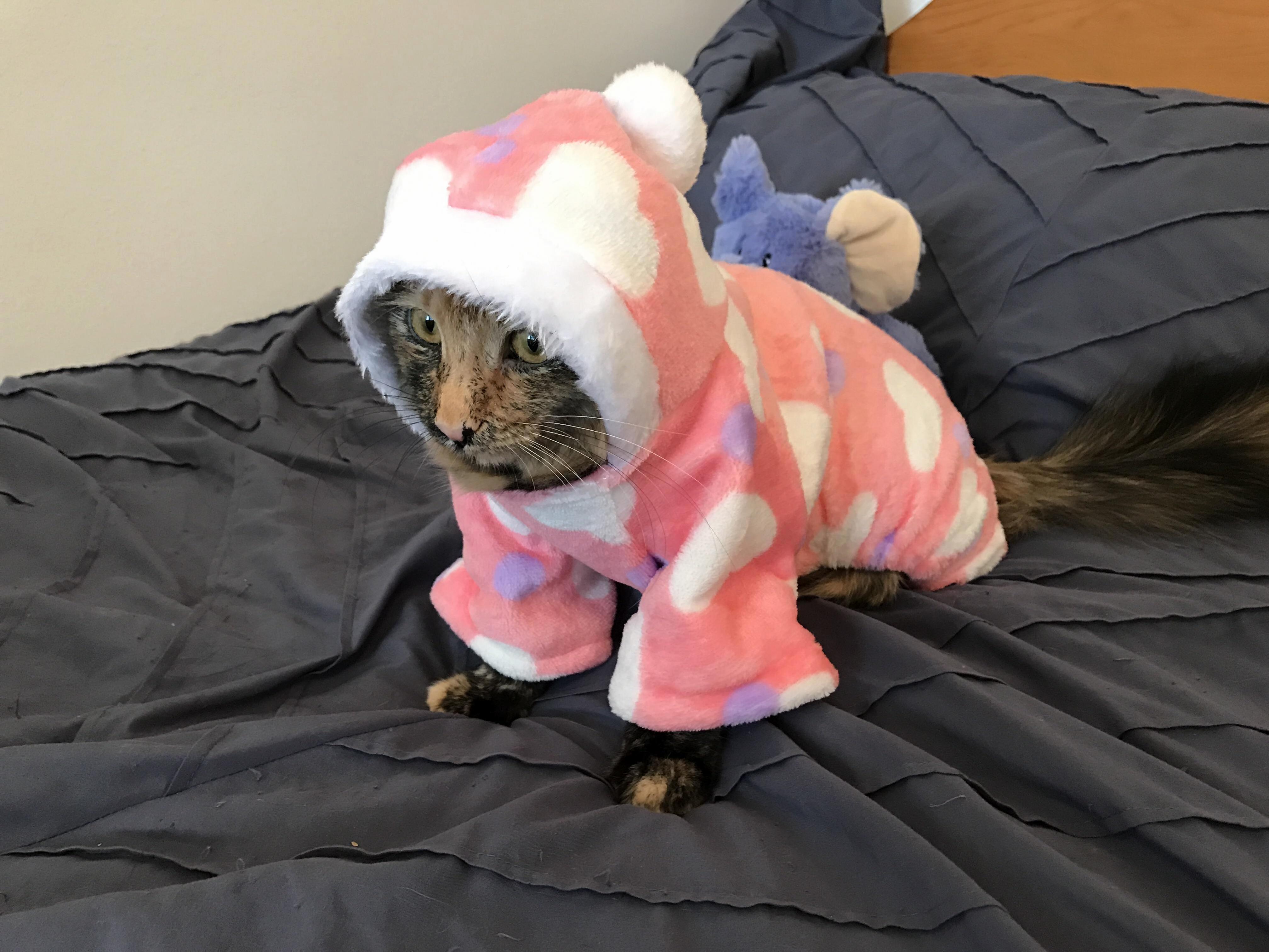 When your cold winter night outfit arrives after the cold winter has ended.