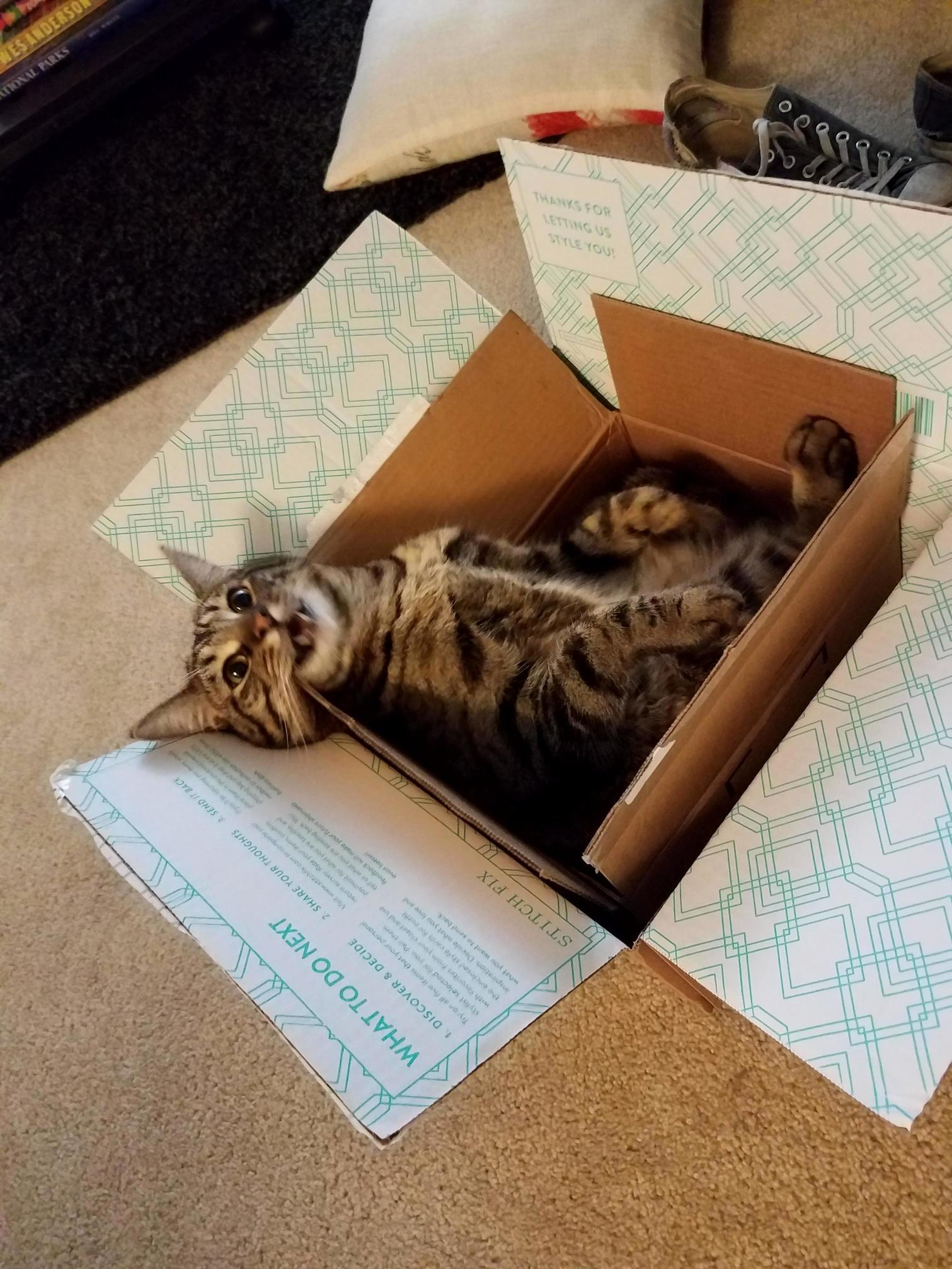 A box…inside a box