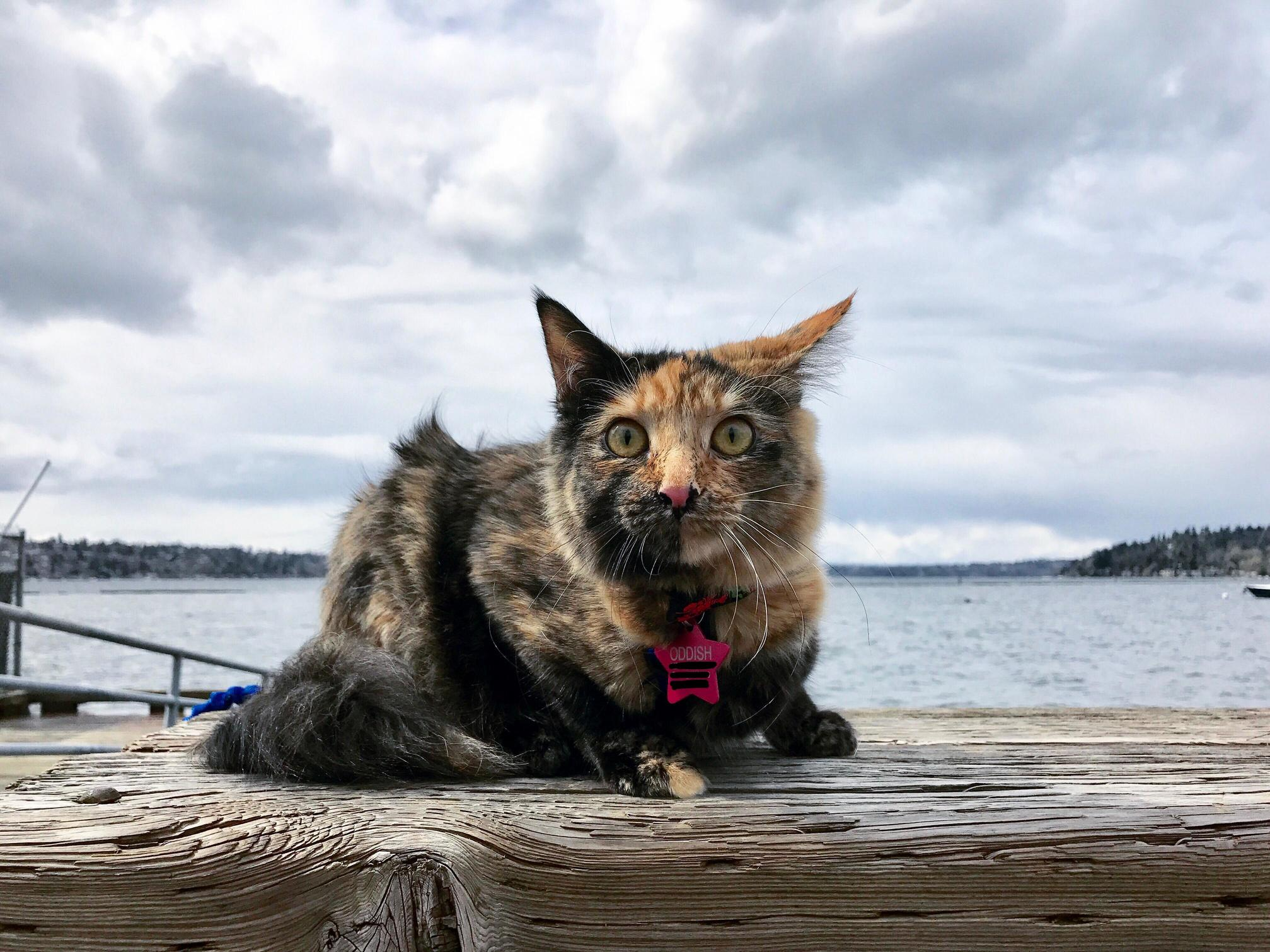 Her first day at the lake