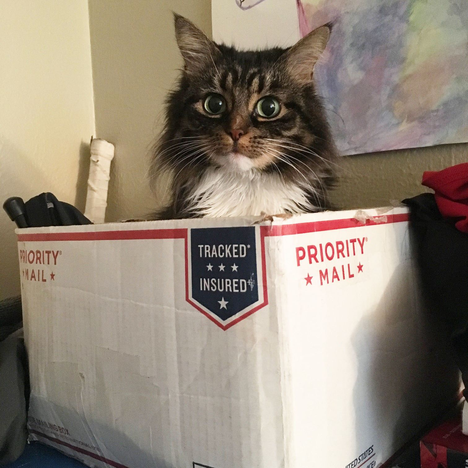 Got an unexpected package this morning