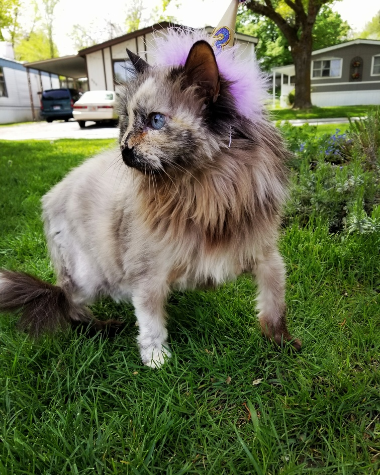 Her 13th birthday