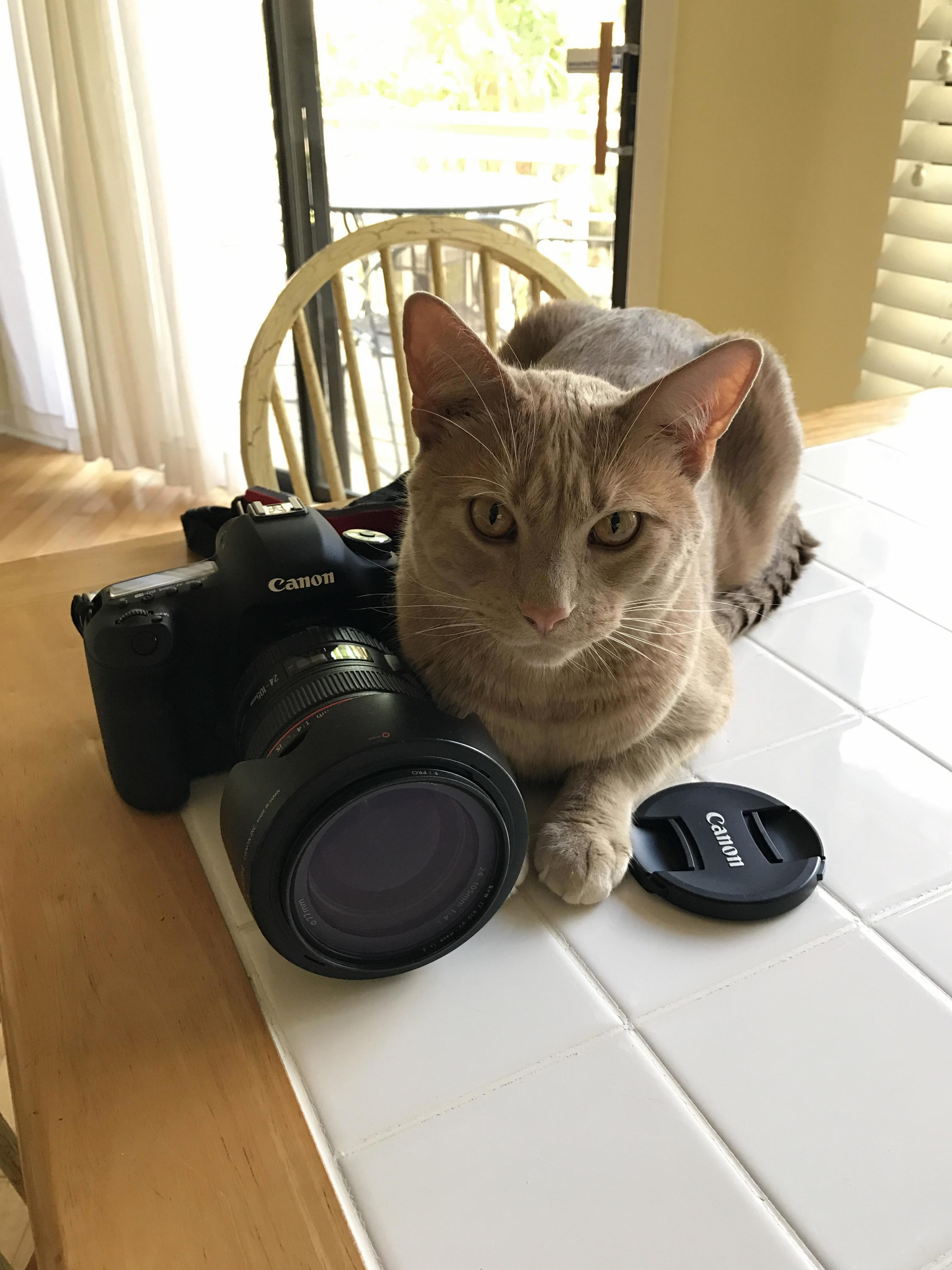 Sunny is an exclusively canon photographer