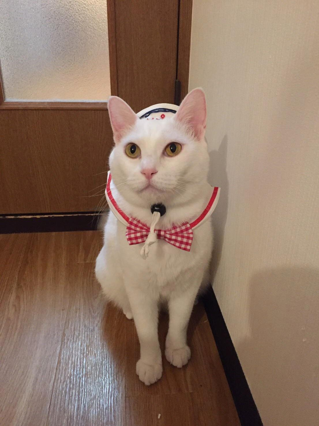 Sailor alice before she ships off for duty