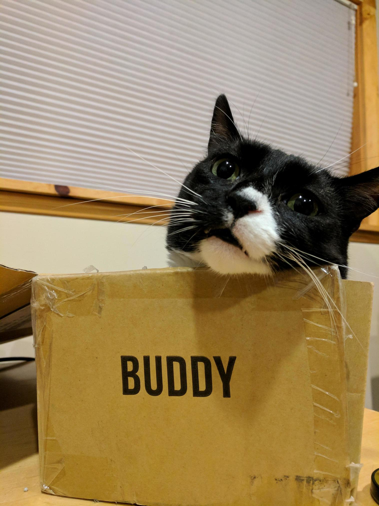 Box buddy