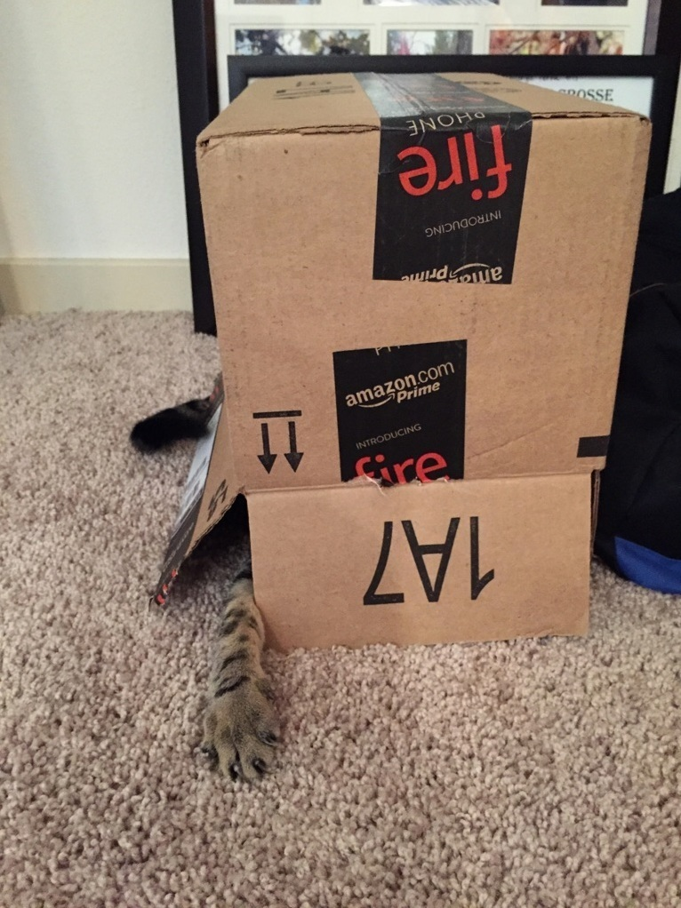 Amazon boxes come with claws now