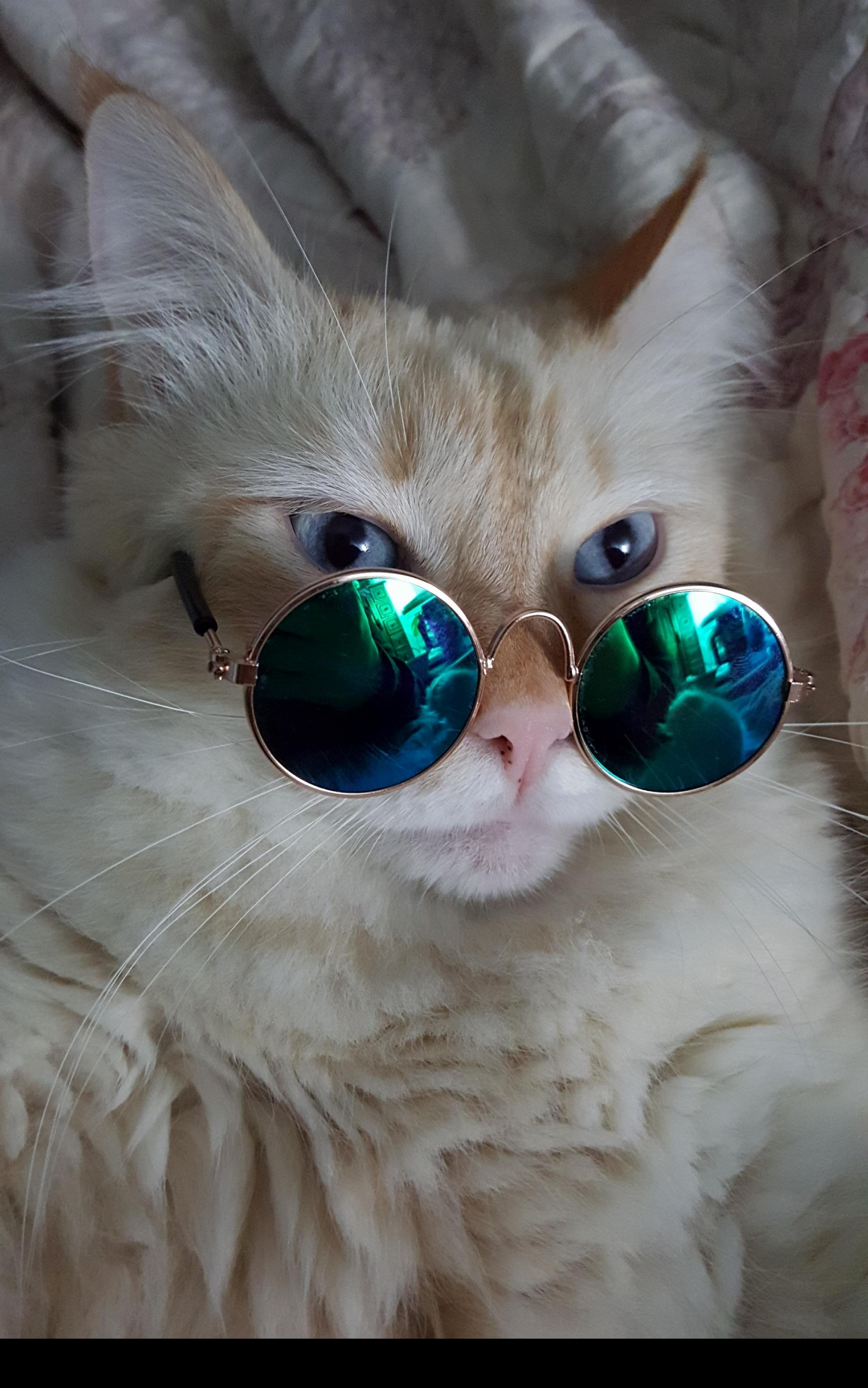 Bing bong is a real fashionable boy